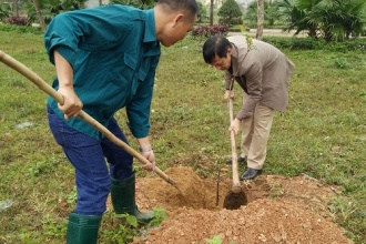 Phong Nha – Ke Bang National Park celebrated the incense offering memorial and launched New Year tree-planting festival